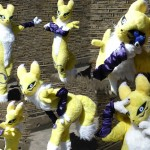 Renamon_Cosplay__by_screamin_jazzy