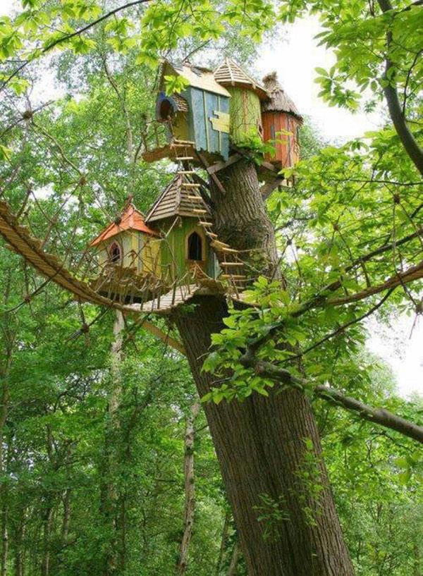 tree_houses